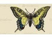 cuento chino Sueño Mariposa