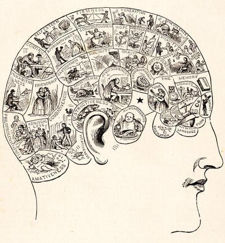 Psiquiatría o Psicoterapia