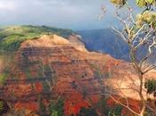 hora Honolulu, inmensa mata verde tropical alberga mayores sitios arqueológicos hawaianos