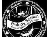 Ecología cueva Nueva Escocia