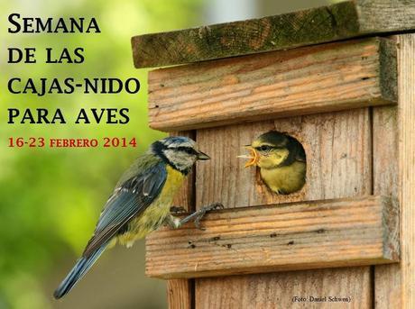 Semana de las Cajas-nido para Aves 16-23 febrero