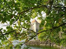 Castillo Chillon: Suiza Medieval