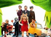 Muppets buscados