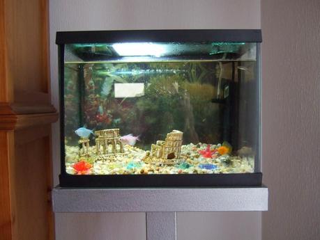 Como hacer un mueble para un acuario peque o paperblog for Mueble kallax acuario