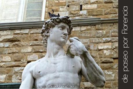 David con una paloma