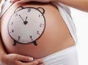 cual mejor momento para quedar embarazada