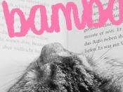 Entre Bambalinas #11: ¿Qué estáis leyendo?