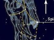 LLuvia estrellas: Virgínidas