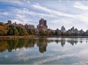 Días Nueva York. Domingo Gospel, Central Park más...