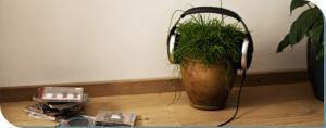 plant sound