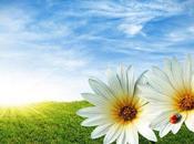primavera…¿qué será espera?