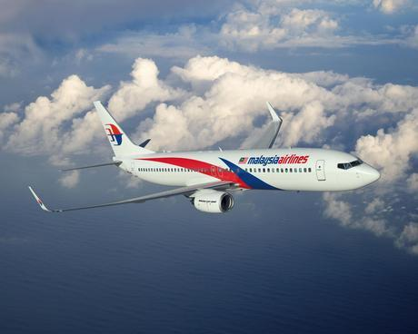 Malaysia Airlines 737-800 ArtworkK65308