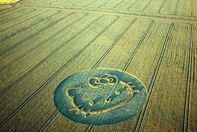 El no-tan-misterio de los Círculos en los Cultivos