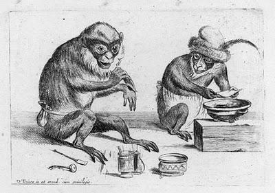 Primates de sombreros anchos y habilidades cognitivas amplias