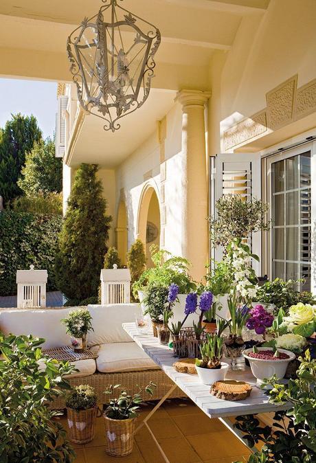 Decora con plantas tu casa paperblog for Decora tu casa virtual