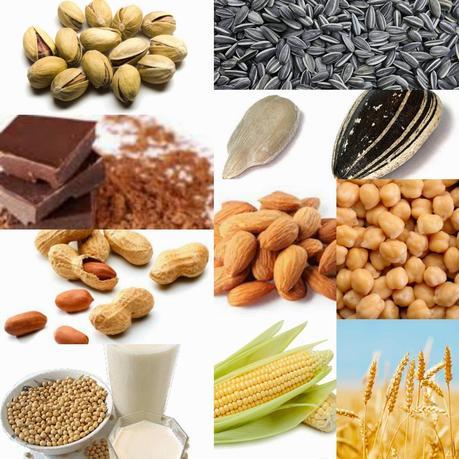 Alimentos ricos en magnesio paperblog - Alimentos ricos en calcio y hierro ...