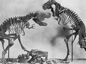 Vuelven dinosaurios trípode