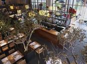 Tarruella Interioristas firma Cuines México Naturaleza, aires mercado culturas