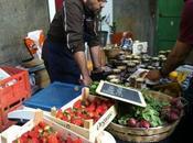 Mercado Buena Vida: productos ecológicos artesanos