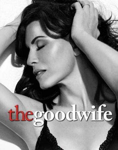 The Good Wife para dummies