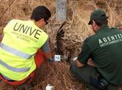 Unidades Investigación Patrulla Canina contra ilegal venenos