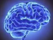 Descubierto origen neurobiológico Trastorno Déficit Atención (TDA)