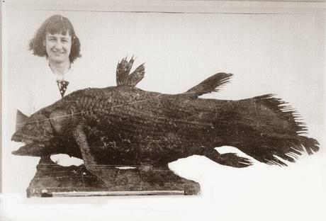 El descubrimiento del celacanto