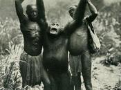 misteriosos simios Bili
