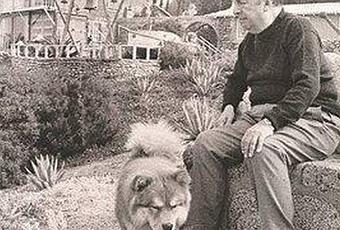 Pablo Neruda un perro ha muerto