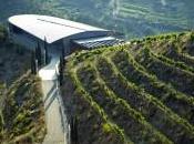 Cata pequeños productores catalanes (II)