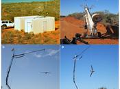 """Drones"" para estudiar fauna marina"