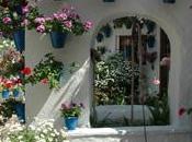 Patios Córdoba Patrimonio Humanidad