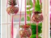 Tres ideas para decorar plantas colgantes