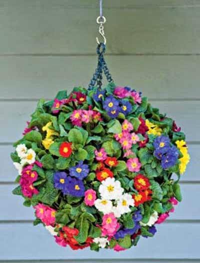 Tres ideas para decorar con plantas colgantes paperblog - Plantas colgantes interior ...