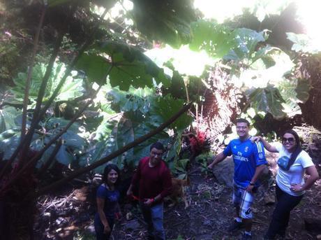 1743732 291944274290147 1727063698 n Traveler 2 Be en el Volcán Irazú, callejeando por Cartago 2