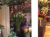 Celebrando Libro Flower Room