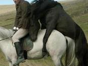 mirada espejo alma caballos hombres'