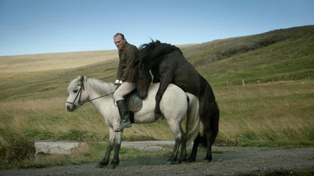 La mirada es el espejo del alma | 'De caballos y hombres'