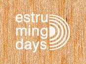 Participando Estruming Days Pontevedra