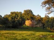 Colaboraciones Extremadura, caminos cultura: Castillo Castellanos (Cáceres), Lista Roja Patrimonio