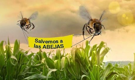 Resultado de imagen para dia mundial de las abejas