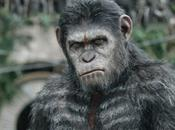 """Pequeño adelanto nuevo trailer amanecer planeta simios"""" veremos proximo jueves"""
