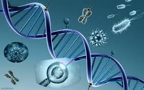 Nanotecnología para Crear y Sanar