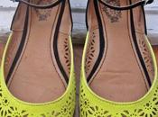 Bailarinas bicolor Green Coast!
