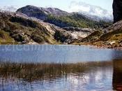 Unas montañas sagradas calizas para Picos Europa