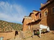 mulo. Valle Bouguemez (Marruecos)