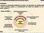 "Jornadas camino hacia evidencia: Maria Teresa Perdomo Piñeros"""