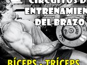 Circuitos entrenamiento brazo Biceps Triceps
