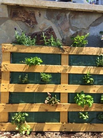 Diy jardin vertical con pallet paperblog for Jardin vertical barato
