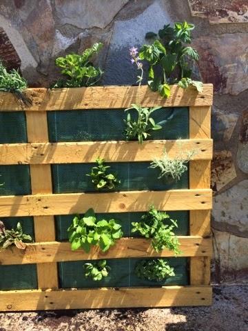 Diy jardin vertical con pallet paperblog Jardin vertical en palets